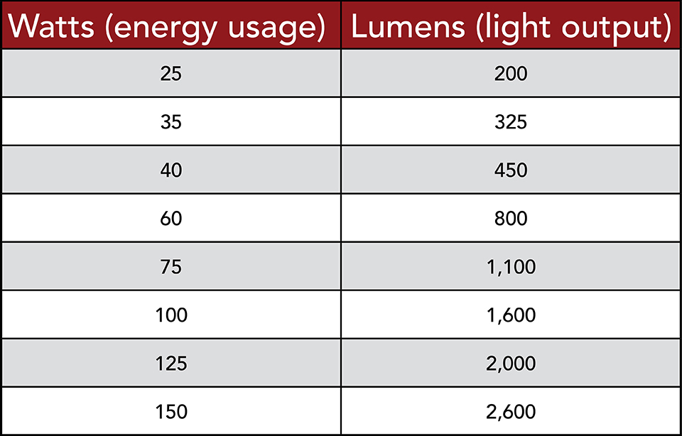 Which Light Bulbs Are Right For You?