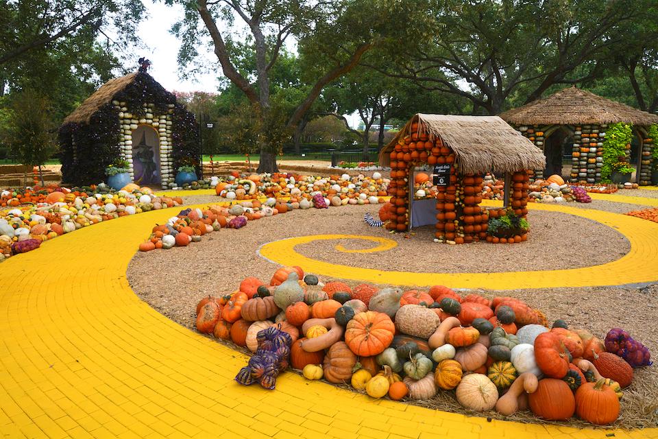 Celebrate Fall at the Dallas Arboretum