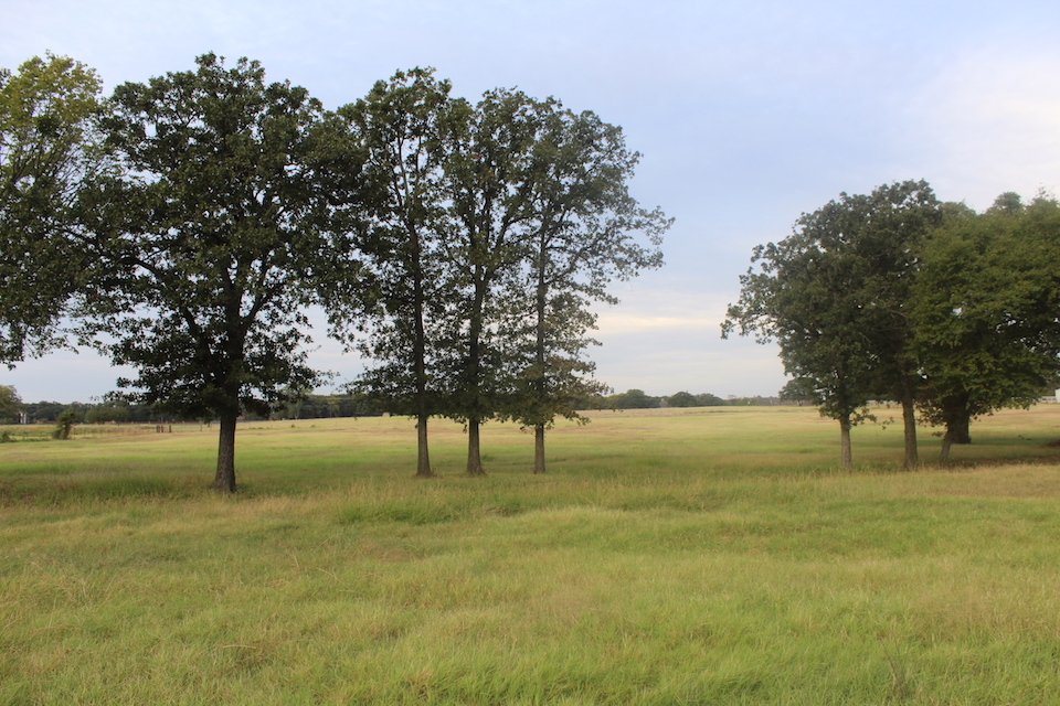 10 Lots for Your Dream Home